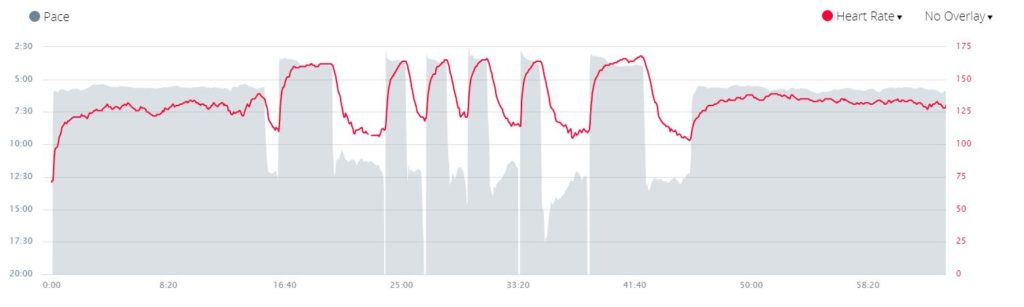 HRM Data for a Pure Speed Workout