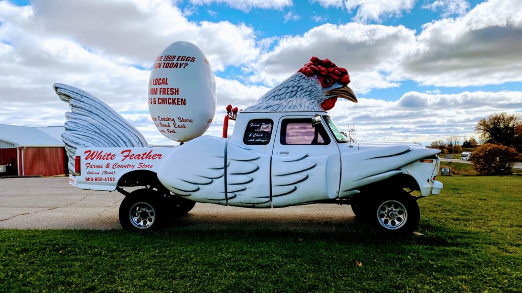 A picture of the truck that looks like a chicken in front of the White Feather store in North Oshawa