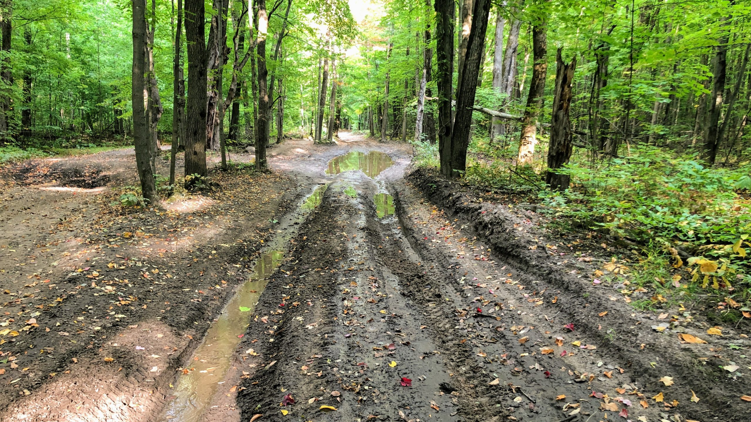 A photo of the ATV Trail called Byers Rd. with deep mud, and deeper tracks.