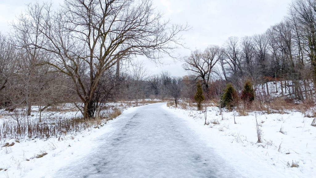 Icy Trail at G. Ross Lord Park.