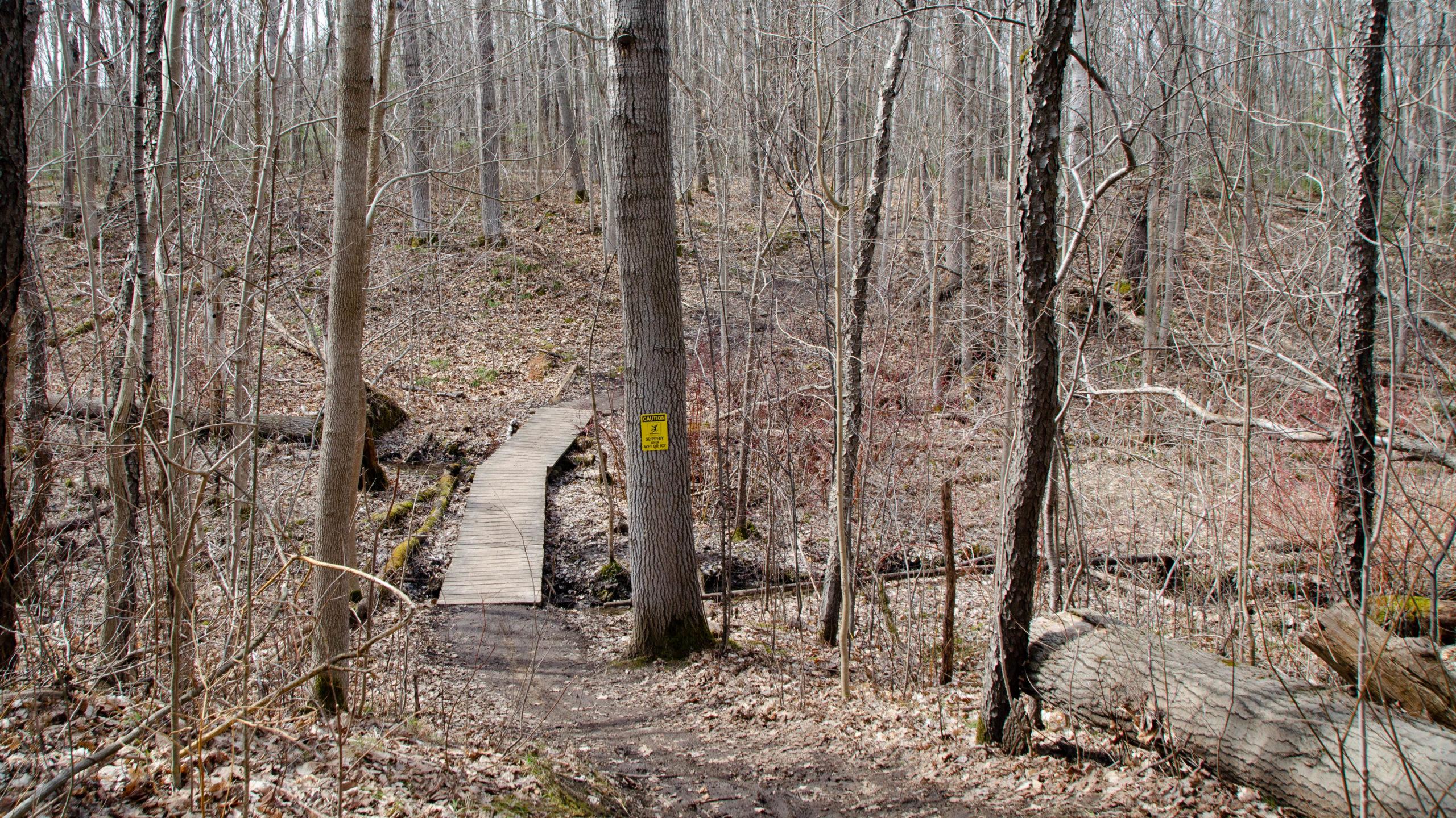 photo of a bridge crossing on the uxbridge town trails.